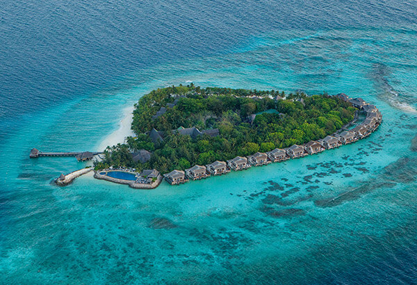 Taj Coral Reef Maldives Package